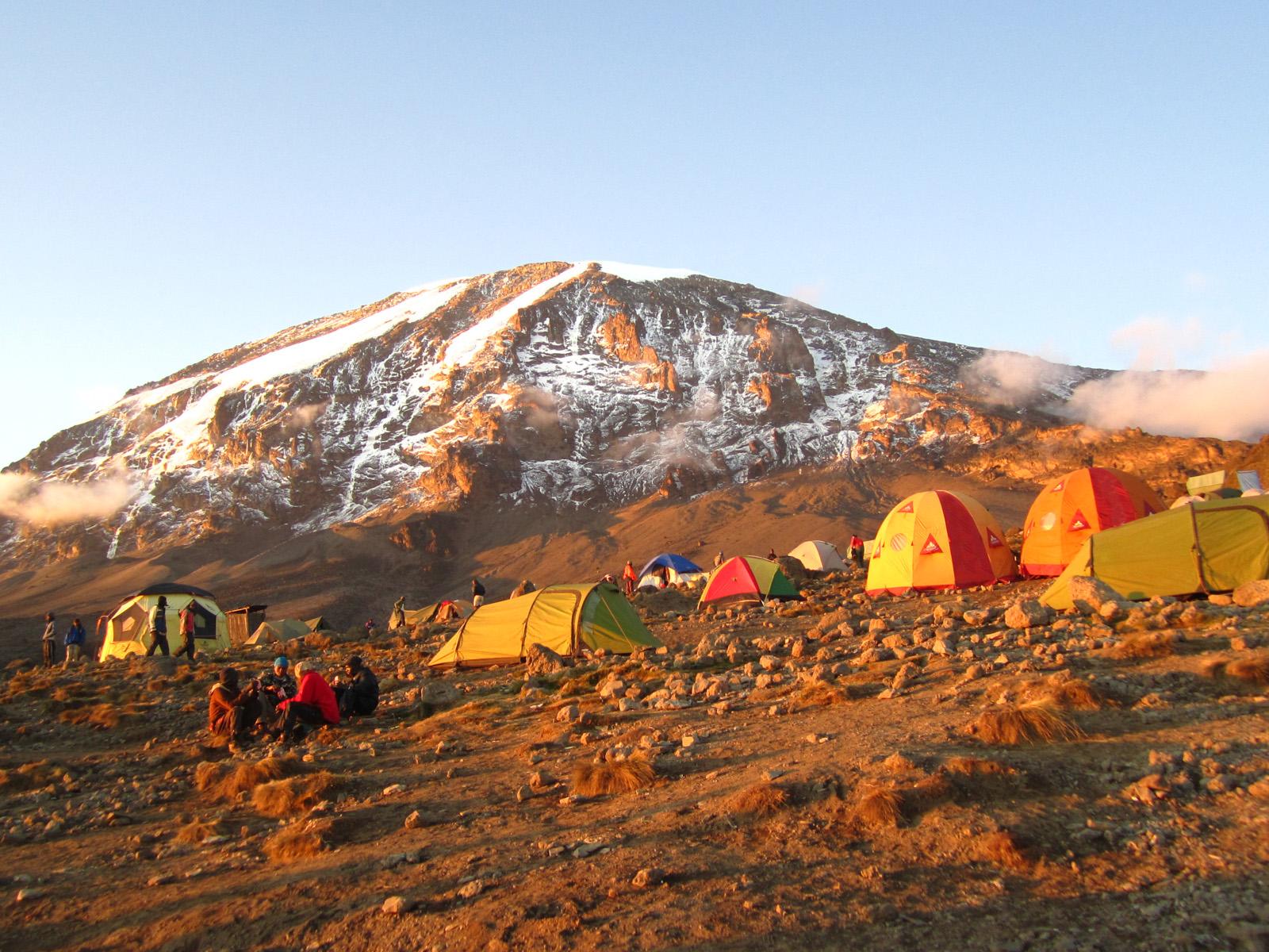 halal kilimanjaro