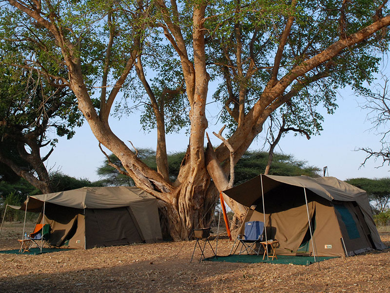Tanzania Halal Camping Safari