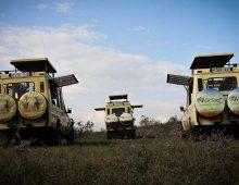 Our-Safari-Vehicles